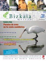 Paraíso de aves en la costa cantábrica