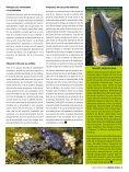 gestión ambiental gestión ambiental - Page 3