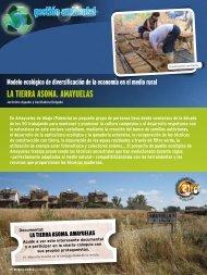 ambiental gestión ambiental gestión