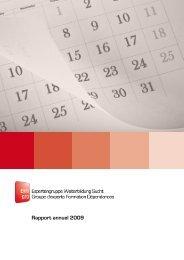 Rapport annuel 2009 - Expertengruppe Weiterbildung Sucht EWS