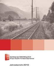 Jahresbericht 2010 - Expertengruppe Weiterbildung Sucht EWS