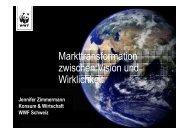 Markttransformation zwischen Vision und Wirklichkeit