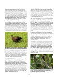 Azores - Page 4