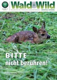 Der Wald - Steirischer Jagdschutzverein