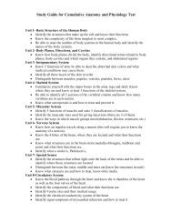 Study Guide for Cumulative Anatomy and Physiology Test