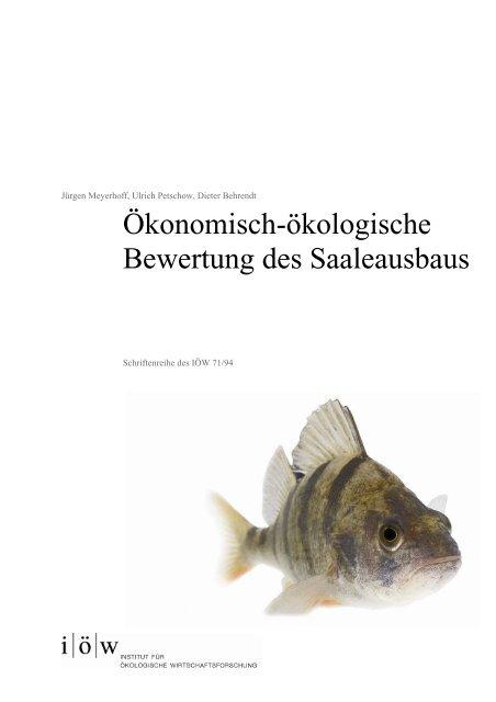 IOEW SR 071 Oekonomisch-oekologische Bewertung Saa..., Seiten