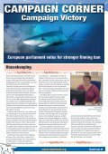 Shark Focus - Page 2
