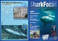 SF-pages issue 23.indd - The Shark Trust