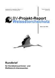 Der Weißstorch in Bayern 2004 - LBV
