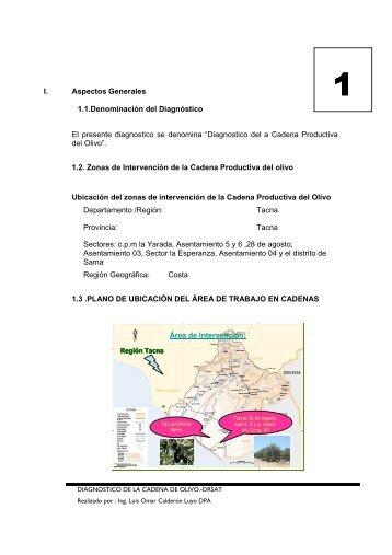 situacion actual de la cadena productiva del olivo - Dirección ...