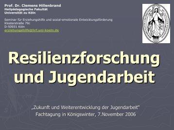 """""""Resilienzforschung und Jugendarbeit"""", Vortrag von Prof. Dr. Clemens"""