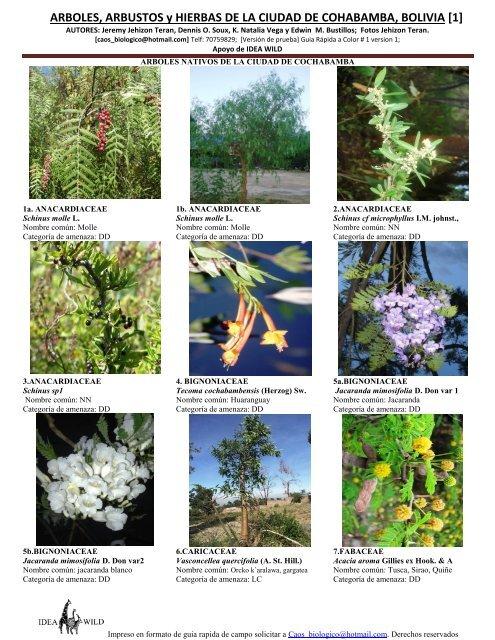 Arboles - Lista nombre arbustos ...