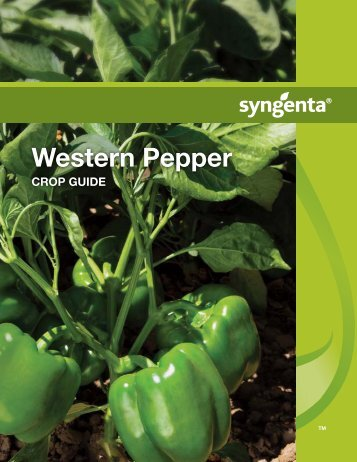 Western Pepper