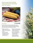 Sweet Corn - Page 6