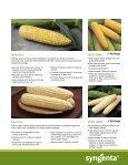 Sweet Corn - Page 7