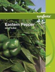 Eastern Pepper