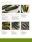 Squash and Zucchini - Page 6