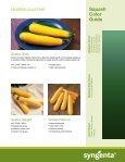 Squash and Zucchini - Page 7