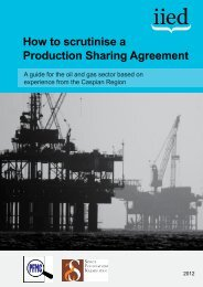 How to scrutinise a Production Sharing Agreement