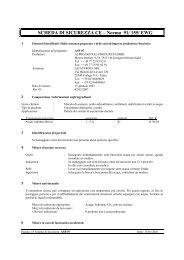 SCHEDA DI SICUREZZA CE – Norma 91/ 155/ EWG