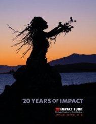 20 YEARS IMPACT