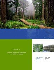 Diplomado en Valoración Económica de Ecosistemas con énfasis en Bosques