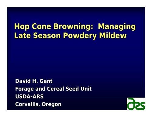 Hop Cone Browning Managing Late Season Powdery Mildew