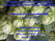 American Hop Convention 2008