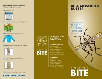 BE A MOSQUITO BUSTER