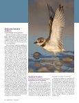 Stewardship - Page 6