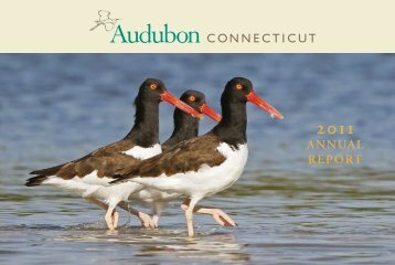 2011 Annual Report - Audubon Connecticut - National Audubon ...