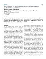 Mechanisms of germ cell specification across the metazoans ...