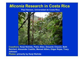 Miconia Research in Costa Rica