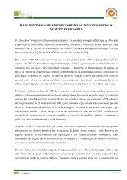PLANO DE PREVENÇÃO DE RISCO Os Municípios Portugueses ...