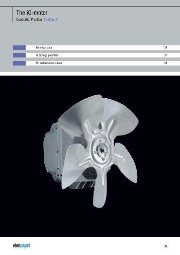 The iQ-motor