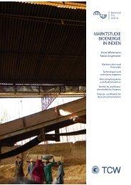 MARKTSTUDIE BIOENERGIE IN INDIEN - TCW Transfer-Centrum ...