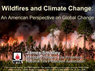 Wildfires and Climate Change