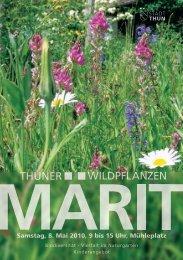 Wildpflanzenmärit 2010 - Thun