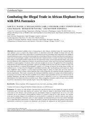 Combating the Illegal Trade in African Elephant Ivory with DNA Forensics