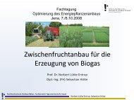 Zwischenfruchtanbau für die Erzeugung von Biogas - TLL