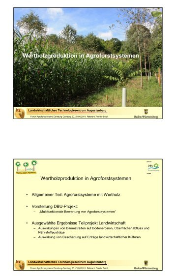 Wertholzproduktion in Agroforstsystemen - TLL