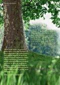 Apnea da sonno - Page 2