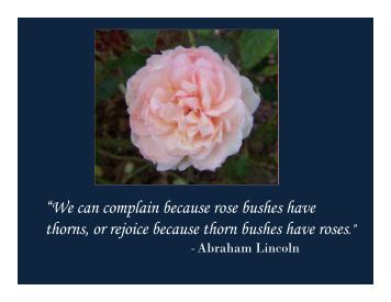 We can complain because rose bushes have thorns