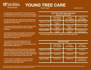 YOUNG TREE CARE - Lake County Extension - University of Florida