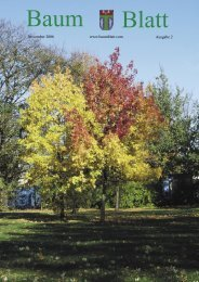Baum Blatt