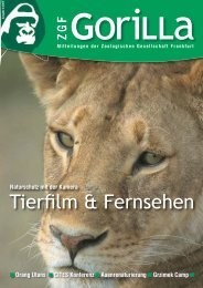 ZGF Gorilla | Dezember 2004 - Zoologische Gesellschaft Frankfurt