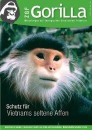 Goldschopf- oder Cat Ba-Langur - Zoologische Gesellschaft Frankfurt