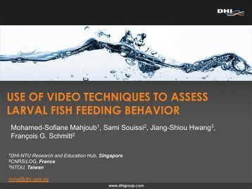 USE OF VIDEO TECHNIQUES TO ASSESS LARVAL FISH FEEDING BEHAVIOR