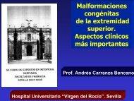 congénitas de la extremidad superior Aspectos clínicos más importantes