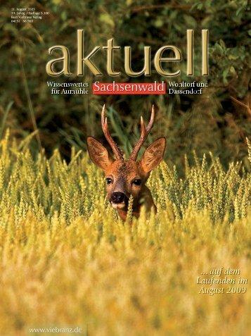 Die Kirche auf dem Berg - Kurt Viebranz Verlag